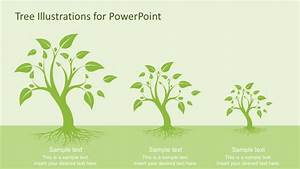 Tree Illustration Diagrams For Powerpoint