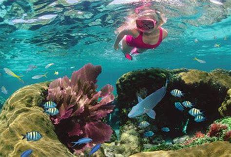 top beaches  scuba diving  bermuda adventure travel
