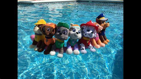 la patrulla canina se bana en una piscina capitulo