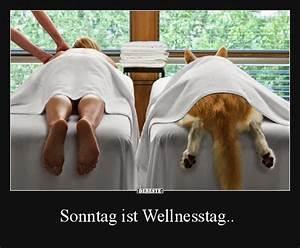Lustige Bilder Sonntag : sonntag ist wellnesstag tiere pinterest sonntag lustiges und witzig ~ Frokenaadalensverden.com Haus und Dekorationen