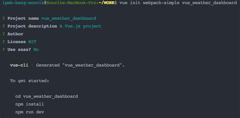 interactive create vue project using answer which line pdf