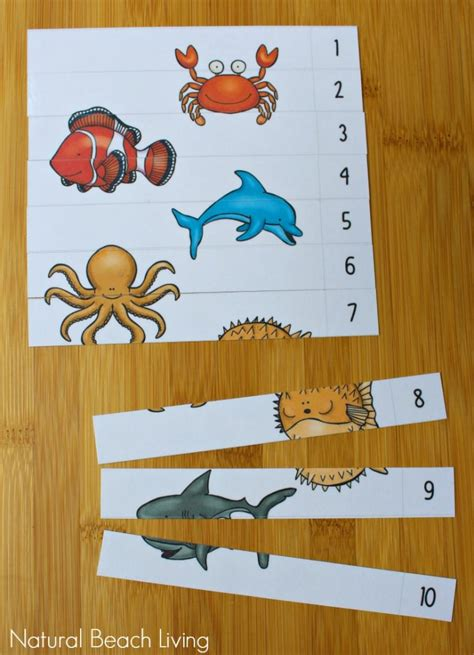 the best animals preschool activities and printables 795 | ocean animals 4 741x1024