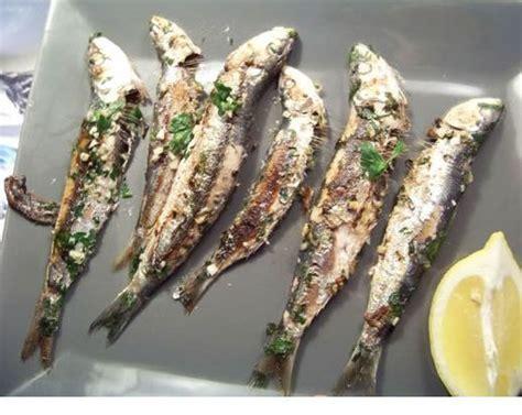 cuisiner les sardines les 25 meilleures idées de la catégorie mer sur