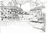 Coloring Landscape River Adults Detailed Sheets Printable Sketch Sketches Template Adult Landscapes Scenery Colouring Rivers Waterfall Landscaping Rainforest Coroflot Prints sketch template