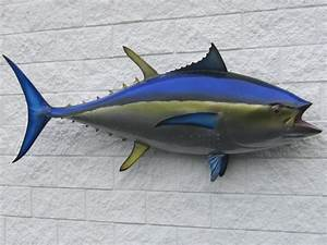 Fish Mounts, Fish and Wildlife Unlimited Taxidermy, Inc ...