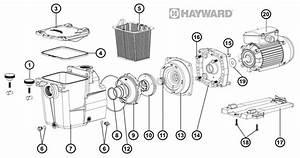 Pompe De Piscine Hayward : pi ces pompe hayward super pump pieces piscine fr ~ Melissatoandfro.com Idées de Décoration