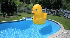 Gigantic Inflatable Rubber Ducky The Green Head
