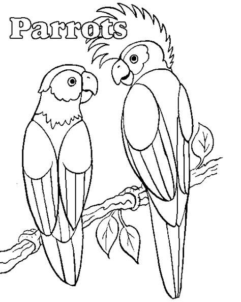 Kleurplaat Papegaai Peuters by Kleurplaten Watervogels