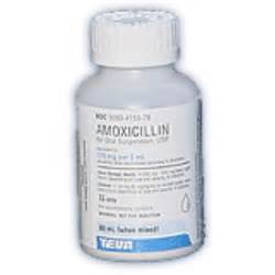 The Dog Medication Guides - Drugs and Treatments for Your Dog ...  Bacterial Infections Amoxicillin Oral Suspension
