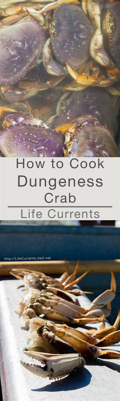 how to cook crab how to cook dungeness crab