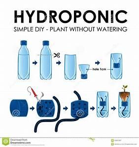 Diagram Of A Hydroponics Setup Stock Vector