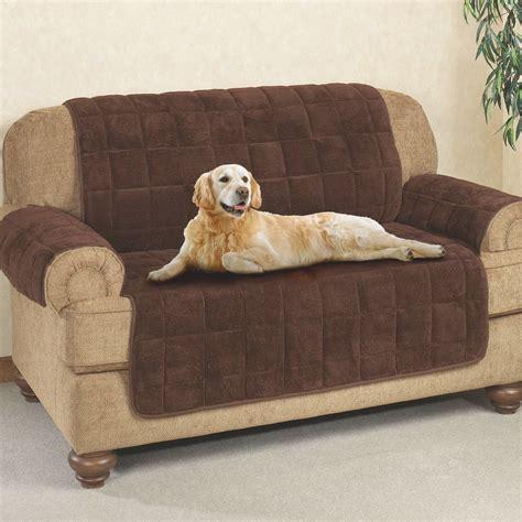 unique dog beds   sofa pics everythingalycecom