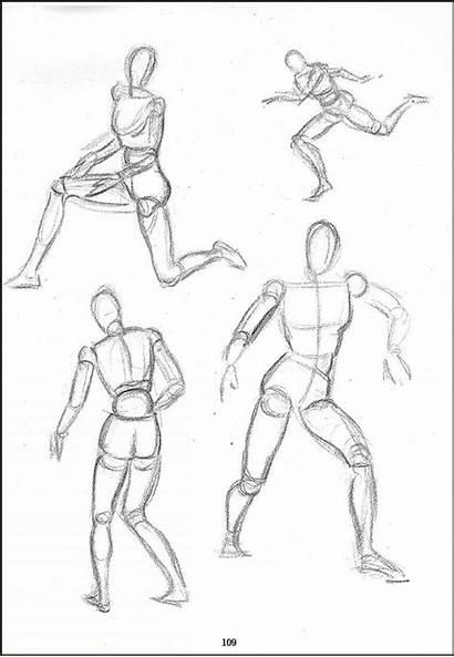 Manikin Drawing Anatomy Poses Study Using Drawings