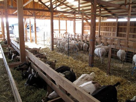 monteillet farmstead monteillet fromagerie