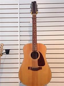 Fender F 310