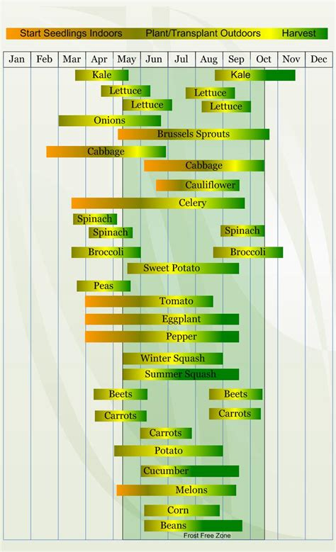 Zone 6 Vegetable Planting Calendar  Vegetable Planting