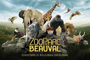 Billet Zoo De Beauval Leclerc : zooparc de beauval offres r ductions et billet pas cher acheter en ligne 365tickets france ~ Medecine-chirurgie-esthetiques.com Avis de Voitures
