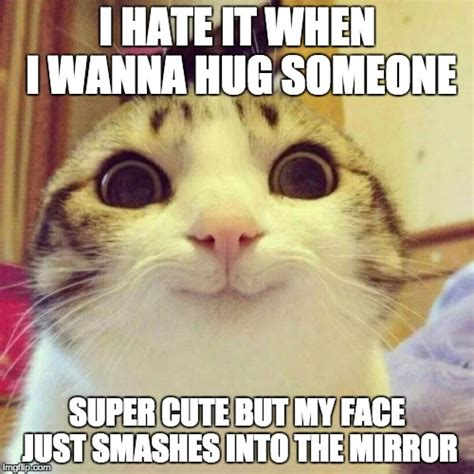 Cat Hug Meme - cute hug meme www pixshark com images galleries with a bite