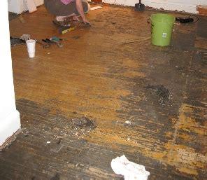 remove adhesive  hardwood floors petes qa