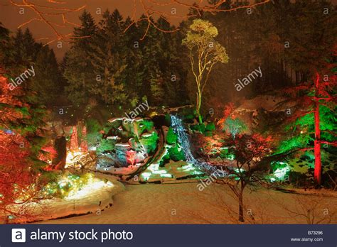 sunken garden with christmas lights at night butchart