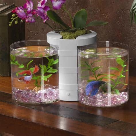 shapes  aquarium interior design