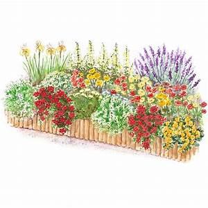Hot-Color Flower Garden Plan