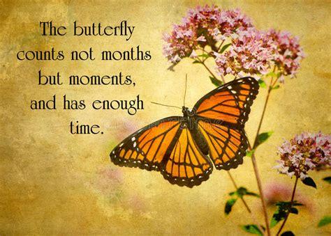 inspirational quote stock image image  imagination