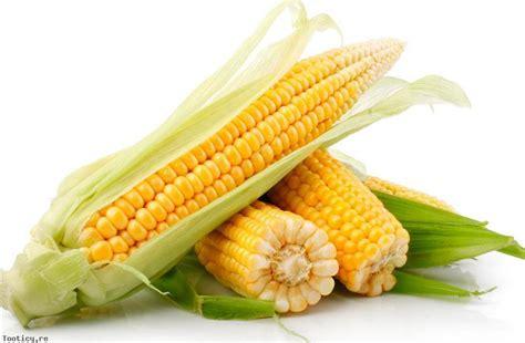 cuisiner des epis de mais maïs doux amap bio devant courbevoie