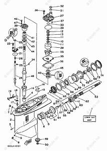 Yamaha Outboard Parts By Year 1999 Oem Parts Diagram For Lower Casing Drive 1 150 175 200