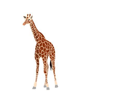 giraffe clipart skin giraffe skin transparent