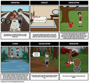 The Scarlet Ibis Storyboard By Jen4books
