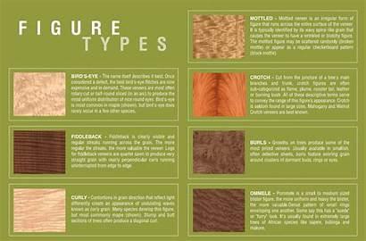 Types Figure Veneer Grain Wood Grains Patterns
