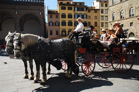 carrozze con cavalli piazza san lorenzo manifestazione contro le carrozze con