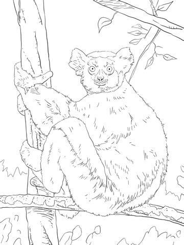indri coloring page supercoloringcom