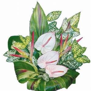 plante et bouquet fleur exotique objet deco deco With tapis chambre bébé avec bouquet fleurs exotiques