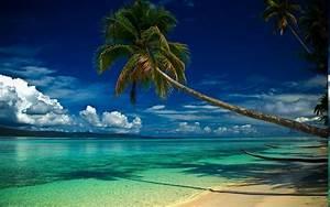 Nature, Landscape, Beach, Palm, Trees, Clouds, Sea, Hill