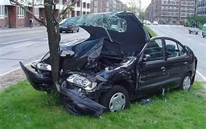 Car Crash: Car Crash Gender
