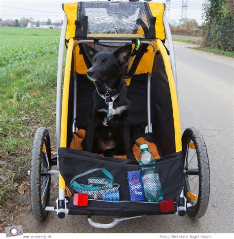 fahrradfahren mit hund der hundeanhaenger von burley