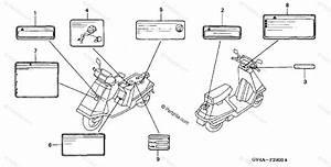 Honda Scooter 2004 Oem Parts Diagram For Labels