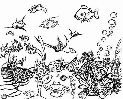 Coloring Sea Pages Underwater Realistic Template Templates
