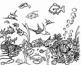 Coloring Sea Pages Underwater Realistic Template Templates Colouring sketch template