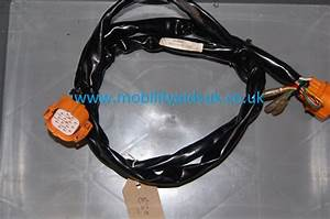 Rascal 388xl Front To Rear Wiring Loom