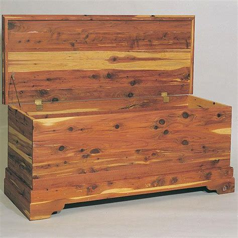bild woodworking project paper plan  build cedar chest