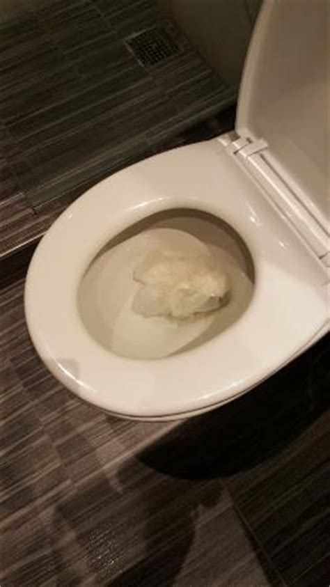stopped up toilet for 3 days picture of the gallivant times square new york city tripadvisor
