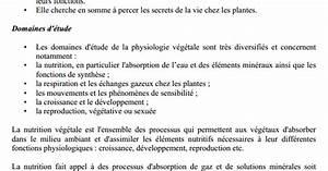 Cours De Physiologie V U00e9g U00e9tale Svi S4