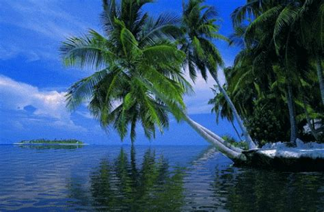 wallpaper hd bergerak pantai laut pemandangan indah