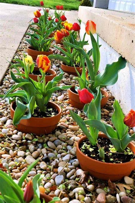 decorate flowerbeds  pebbles  rocks