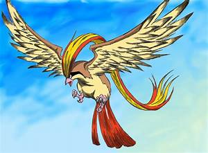 Wonderful Pidgeot Wallpaper | Full HD Pictures