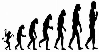 Evolution Sapiens Revolution Summary Homo Humans Pdf