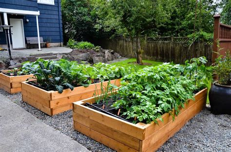 Photos Gallery Of Diy Small Vegetable Garden Plans Ideas